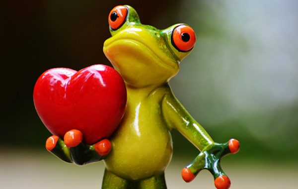 Cardiovascular Disease (CVD) Risk